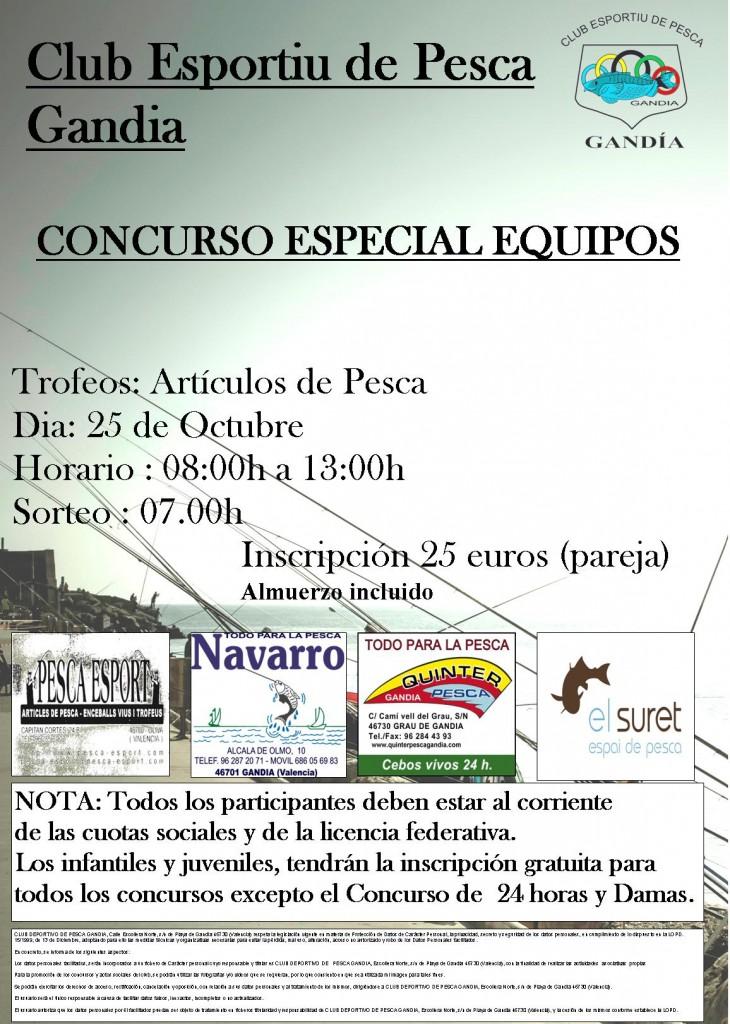 EQUIPOS15 web